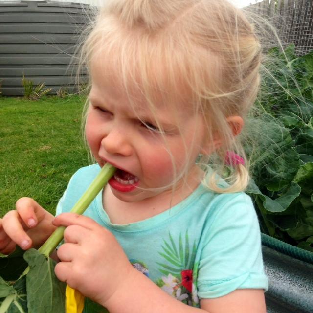Fresh broccoli stalks taste amazing..